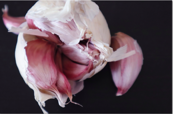 Garlic Nutrition Herbal Guide