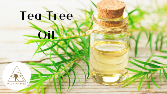 How can Tea Tree oil help the immune system?